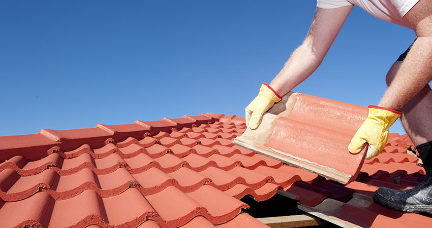 roofrepair Repair & Restoration